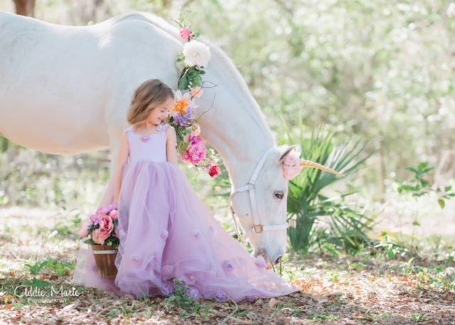 Photo Shoot Venue Horse Power Events Orlando Fl